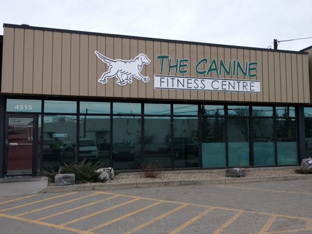 The Canine Fitness Center